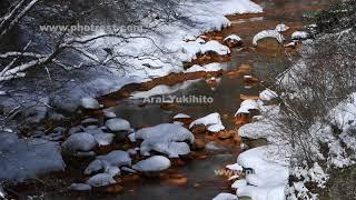 渓流の動画素材, 4K写真素材