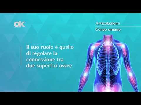 Trattamenti efficaci osteocondrosi