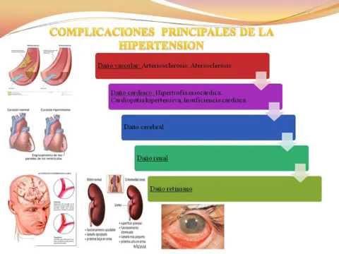 La presión arterial normal en los seres humanos