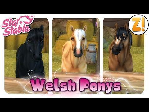 , title : 'Star Stable: Das Welsh Pony [PFERDEKAUF]   Let's Play ♥ [GERMAN/DEUTSCH]