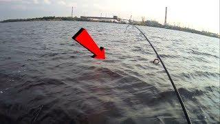 Рыбалка со спиннингом на рыбинском водохранилище