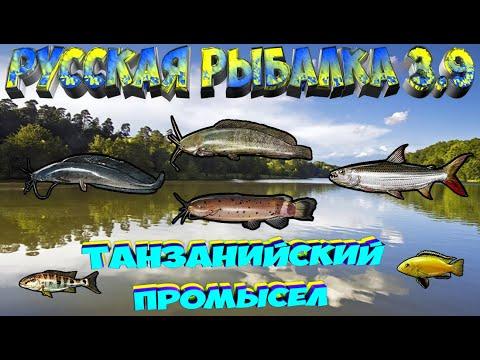 Русская рыбалка 3.9. Танзанийский промысел. Мбамба. Сом Маловийский.