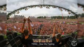TWIIG - How We Feeling @Tomorrowland  2016