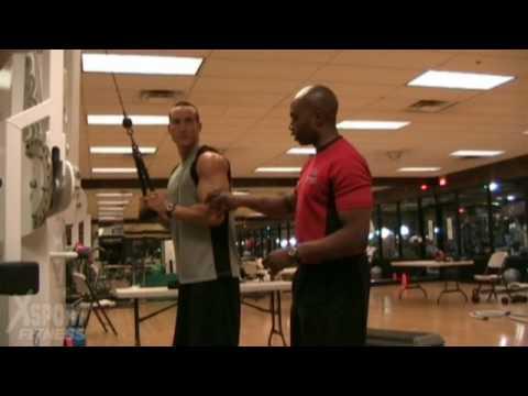 Les études pour le gonflement des muscles pectoraux