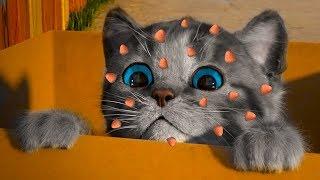 ПРИКЛЮЧЕНИЕ МАЛЕНЬКОГО КОТЕНКА / мультфильм про котика для детей / Спасаем и лечим кота #пурумчата
