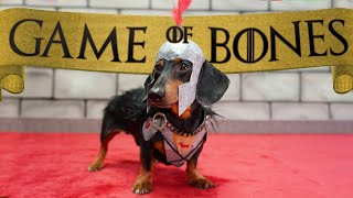 """Ep 5. GAME of BONES - """"Dachshunds are Coming"""""""