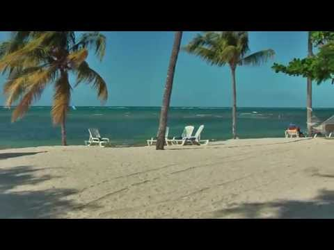 Hotel Brisas**** Guardalavaca Cuba is situated on a beautiful sandy beach with palm trees