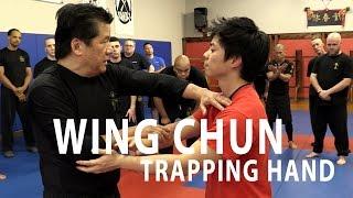 Sifu Francis Fong - Trapping Concept | FFIA Public Video