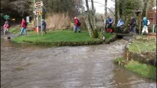 preview picture of video 'Swansea Ramblers walking in Parkmill, crossing a swollen stream'