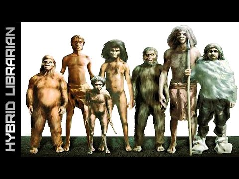 10 Mysterious Extinct Human Species