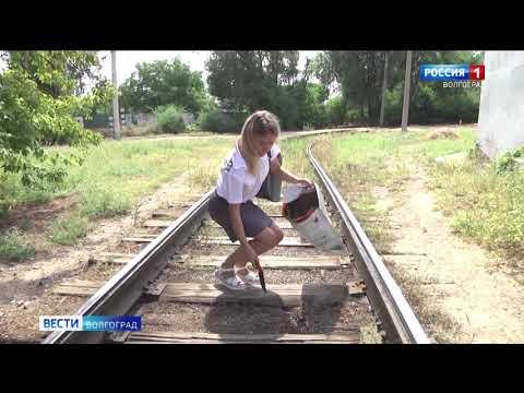 В Волгоградской области Управлением Россельхознадзора при проведении карантинного мониторинга выявлены очаги произрастания ценхруса малоцветкового