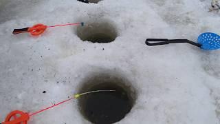 Зимния рыбалка финский залив