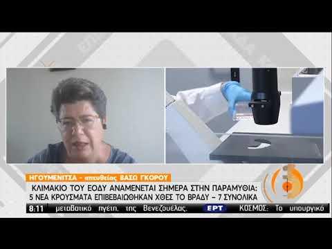 Συναγερμός στην Παραμυθιά-Κλιμάκιο του ΕΟΔΥ στην περιοχή | 22/06/2020 | ΕΡΤ