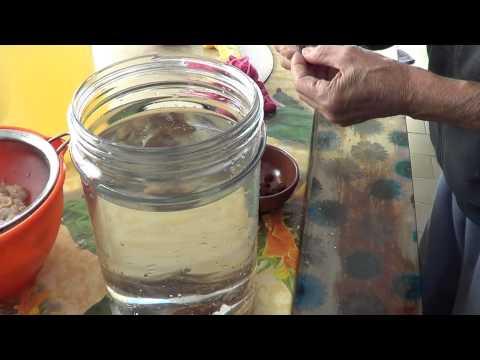 Tintura di foglie per labbassamento di zuccheri nel sangue