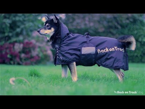 Hundtäcke   Back on Track®