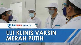 Erick Thohir Soal Vaksin Merah Putih Uji Klinis I-III Tahun Depan, Mulai Diproduksi Tahun 2022