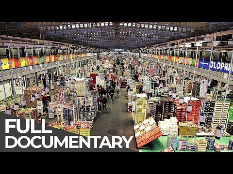 Giant Food Market: Rungis Paris | Giant Hubs | Episode 5 | Free Documentary