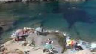 Virual Elba Spiaggia Sant Andrea