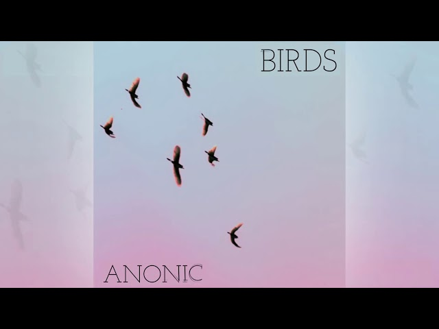 Anonic - Birds [Official]