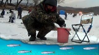 Рыбалка во владивостоке сегодня 2019