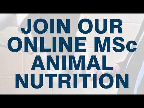 University of Glasgow, MSc Animal Nutrition [Online Distance Learning]