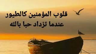 تحميل اغاني أجمل خاطره عن قلوب المؤمنين #كلام_جميل #اسلاميات #خواطر_جميلة #رمزيات_منوعة #اجمل_مقطع #كلام_من_ذهب MP3