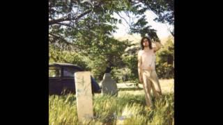 Ariel Pink's Haunted Graffiti - The Doldrums (2000) (Paw Tracks vinyl) (FULL LP)