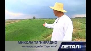 Зелёный туризм.flv