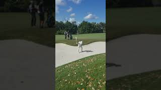 Alex Noren Face On 45 Degrees Iron Shot From Sand