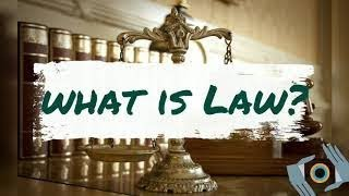 What is the law? Importance of law in the society