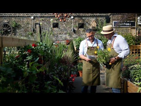 Entrepreneurs: The Nunhead Gardener