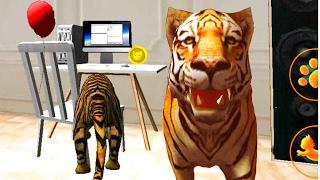 Играем в СИМУЛЯТОР КОТА 🐱🐱🐱 #16 ТИГР мульт-игра про котят развлекательное видео