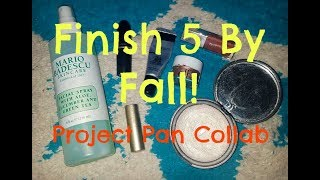 Finish 5 By Fall INTRO! | Project Pan Collab w/ LuciaTepperBeauty!