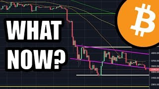 Bitcoin Drops To 2800 In The Next Few Days (Altcoins Too)...What Do You Do? [+Cardano Update]