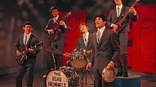 "THE BEAU BRUMMELS- ""LAUGH, LAUGH""(LYRICS)"