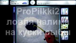 Где и как ловить налима propilkki2