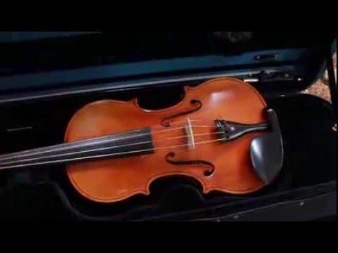 Franz sandner 306 violin outfit (germany)   reverb.