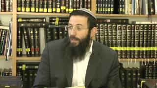 74 הלכות שבת או''ח סימן שמ סע' ד-ה הרב אריאל אלקובי שליט''א