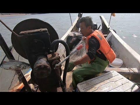 """来叔来岛礁收网,竟捕到一条5斤重的鱼中""""皇帝"""",卖掉赚大发了"""