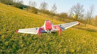 FPV Wing Formation with Mini-Drak & Mini-Graugans