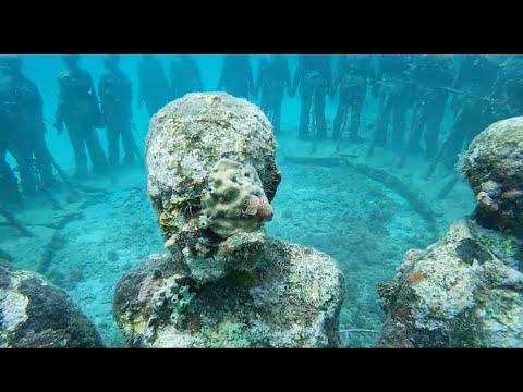 Sandals Grenada Honeymoon - Mr. and Mrs. Wilson July 2019