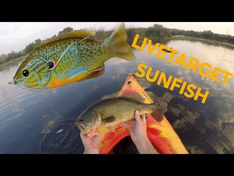 Overfladefiskeri efter bass fra kajak