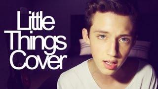 Трой Сиван, Little Things (cover)