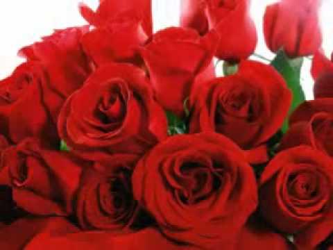 Música Rosas Vermelhas