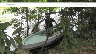 preview picture of video 'Monkey River Tour in southern Belize - Paulinchen Worldwide'