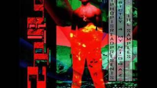 Tupac - Souljah's Revenge