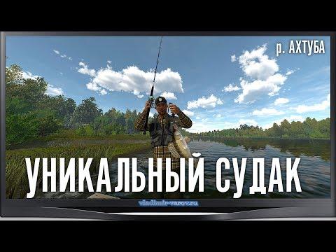 The Fisherman - Fishing Planet. Уникальный Судак. р. Ахтуба.