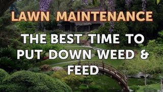 The Best Time to Put Down Weed & Feed