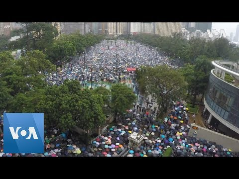 Timelapse: Hong Kong Protesters Continue Sunday Demonstration Despite Rain
