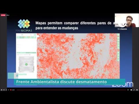 Frente Parlamentar Ambientalista debate aumento da taxa de desmatamento - 17/06/20